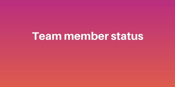 Team members status