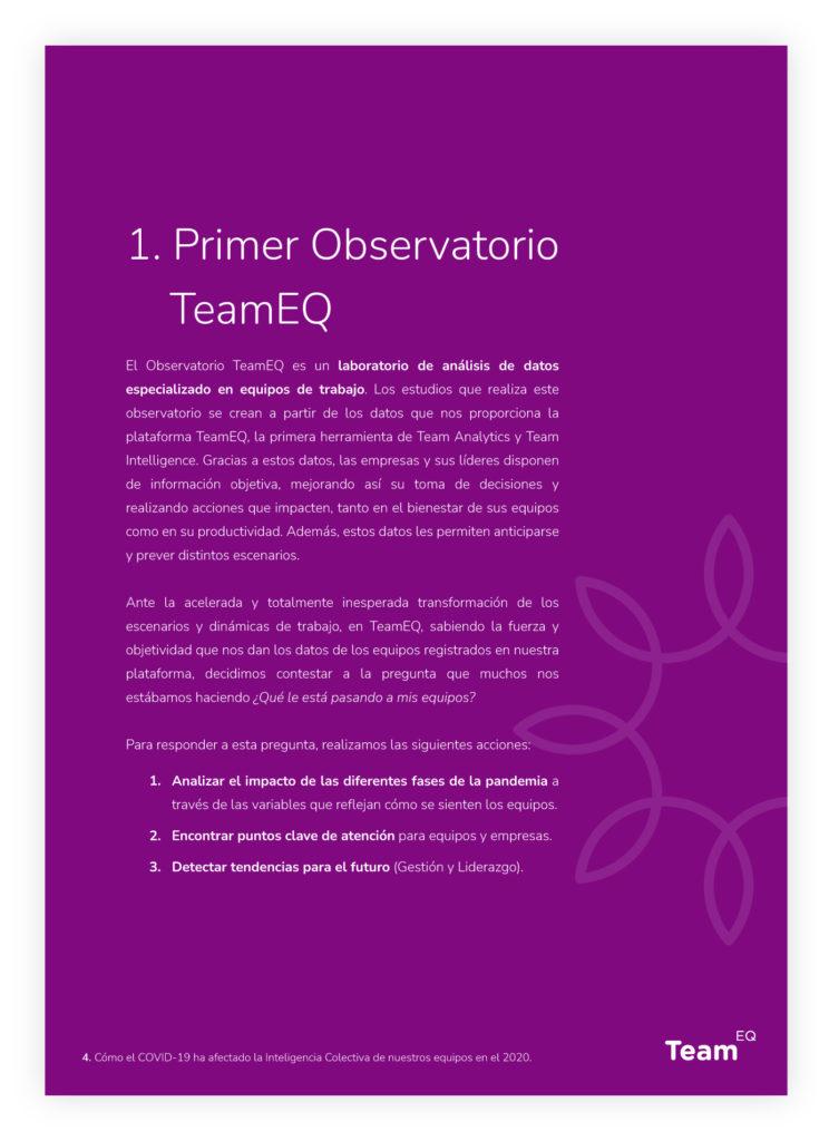 Whitepaper-TeamEQ-Primer Observatorio TeamEQ